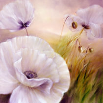 Annette Schmucker - White poppies