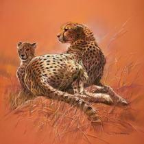 Renato Casaro - Cheetah Mother