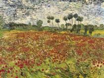Vincent van Gogh - Field of Poppies