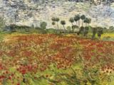 Field of Poppies von Vincent van Gogh