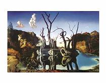 Salvador Dalí - Swans reflecting elefants