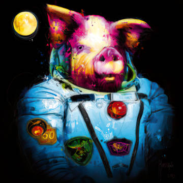 Pig in Space of artist Patrice Murciano as framed image