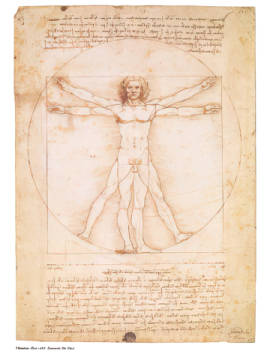 Vitruvian Man of artist Leonardo da Vinci as framed image