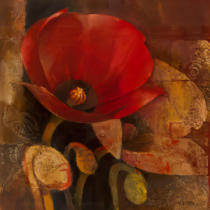 Albena Hristova - Poppy Reflection