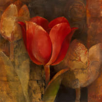 Albena Hristova - Tulip Reflection