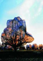 Christo und Jeanne-Claude - Wrapped Trees 31