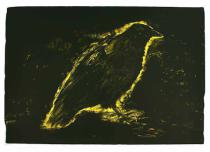 Jim Dine - Raven, Sun´s Night Glow