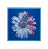 Andy Warhol - Daisy, blue