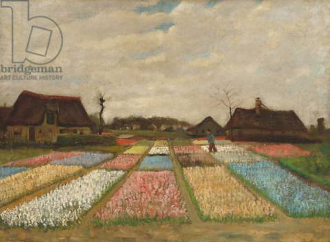Kunstdruck: Vincent van Gogh, Flower Beds in Holland, c.1883