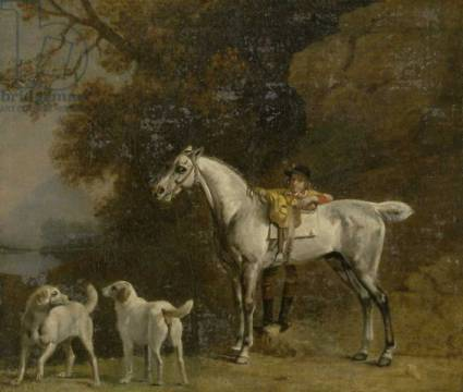 Huntsman with a Grey Hunter and Two Foxhounds: details from the Goodwood 'Hunting' picture, 1760-61 von Künstler George Townley Stubbs als gerahmtes Bild