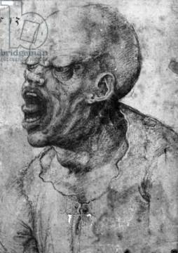 Kunstdruck: Leonardo da Vinci, Portrait of a Man Shouting
