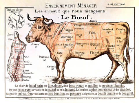 Beef: diagram depicting the different cuts of meat von Künstler French School als gerahmtes Bild