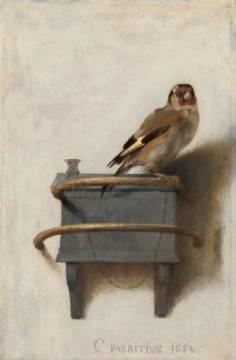 The Goldfinch, 1654 of artist Carel Fabritius as framed image