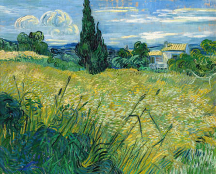 Fine Art Reproduction, individual art card: Vincent van Gogh, Landscape with Green Corn, 1889
