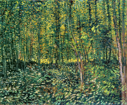 Trees and Undergrowth, 1887 of artist Vincent van Gogh as framed image