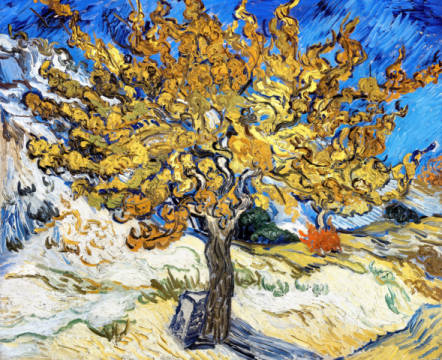 Mulberry Tree, 1889 of artist Vincent van Gogh as framed image