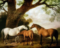 George Townley Stubbs - Two Shafto Mares and a Foal, 1774