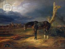 Albrecht Adam - Ownerless Horse on the Battlefield at Moshaisk in 1812, 1834