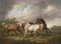 Charles Towne - Three Horses in a Stormy Landscape