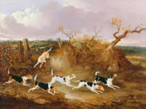 John Dalby - Beagles in Full Cry, 1845