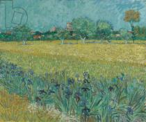 Vincent van Gogh - Field with Flowers near Arles, 1888