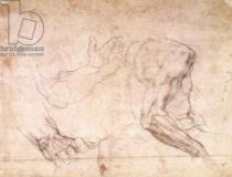 Michelangelo Buonarroti - Studies of hands and an arm