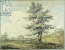 Joseph Mallord William Turner - Landscape with Trees and Figures, c.1796