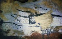 Unbekannt - Rock painting of a bull with long horns, the Hall of Bulls, c.17000 BC