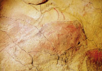 Prehistoric - Bison, from the Caves at Altamira, c.15000 BC