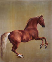George Townley Stubbs - Whistlejacket, 1762