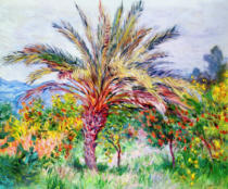 Claude Monet - Palm Tree at Bordighera, c.1884