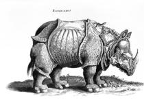 Albrecht Dürer - Rhinoceros, no.76 from 'Historia Animalium' by Conrad Gesner (1516-65) published in July 1815