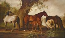 George Townley Stubbs - Mare and Foals