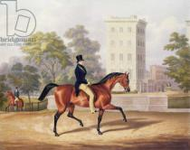 George Henry Laporte - The Marquis of Anglesea on Horseback in Hyde Park, in his 80th year, engraved by J. Harris, 1847