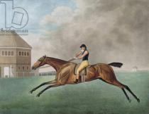 George Townley Stubbs - Baronet, 1794