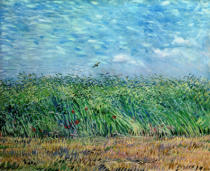 Vincent van Gogh - Wheatfield with Lark