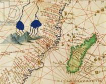 Battista Agnese - Madagascar, from an Atlas of the World in 33 Maps, Venice, 1st September 1553  (detail from 330955)