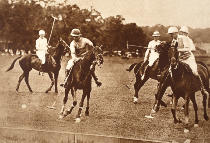 English Photographer - King Edward Playing Polo at Long Island, New York, 1930s