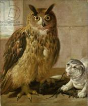 Johann Heinrich Roos - Eagle Owl and Cat with Dead Rats
