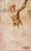 Michelangelo Buonarroti - Sketch of a Nude Man (W. 4 recto)