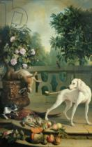 Alexandre-Francois Desportes - Animals, flowers and fruits