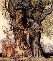Arthur Rackham - I am old Philemon! murmured the oak, illustration from 'A Wonder Book for Girls and Boys' by Nathaniel Hawthorne, 1928