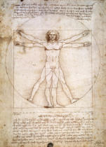 Leonardo da Vinci - Proportions of the human figure, c.1492