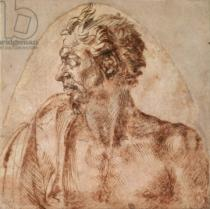 Michelangelo Buonarroti - Study of Head and Shoulders