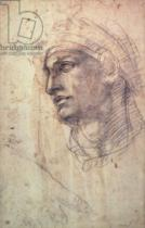 Michelangelo Buonarroti - Study of a Head  Inv.1895/9/15/498 (W.1)