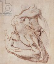 Michelangelo Buonarroti - Study of an Arm  Inv.1859/5/14/819 (W.49)