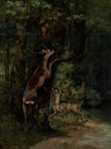 Gustave Courbet - Deer in the Forest, 1868