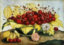 Giovanna Garzoni - Cherries and Carnations