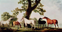 George Townley Stubbs - Mares by an Oak Tree