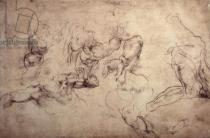 Michelangelo Buonarroti - W.61v Male figure studies